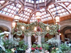 Biltmore Estate-Winter Garden